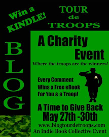 Blog Tour de Troops