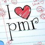 LOVE PMR
