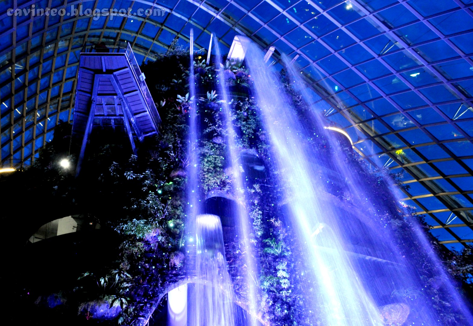 this post would have lesser pictures as i have written more about cloud forest in my first post and truthfully i take really bad photographs at night - Garden By The Bay At Night