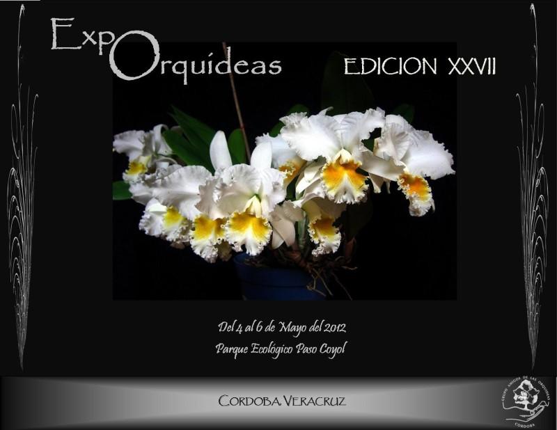Hoy inició la Expo,Orquidea en su edición 27, en Córdoba, Veracruz. Hagan clic en los imágenes abajo para ver más detalles.