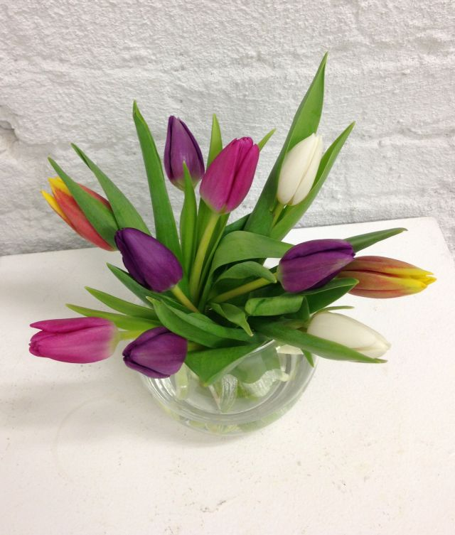 fresh flower preservatives tips on how to keep your cut flowers fresh