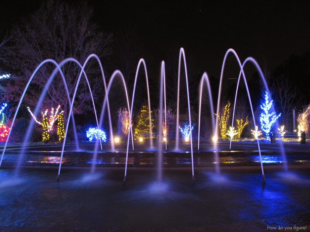 Charlotte irrigation and lighting specialist the best - Daniel stowe botanical garden christmas ...