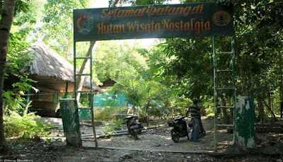 Hutan Nostalgia Pulau Alor