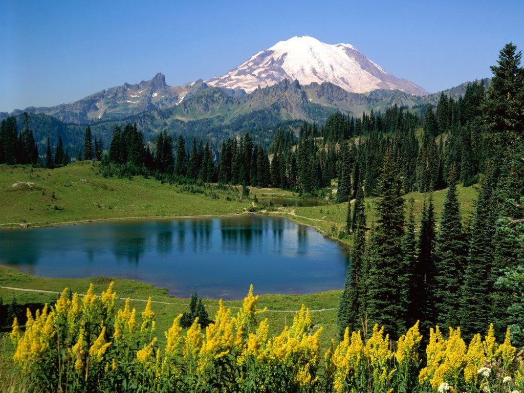 Download this Beauty Nature Pictures picture