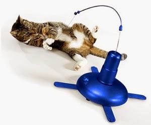 Juguetes para gatos ideales