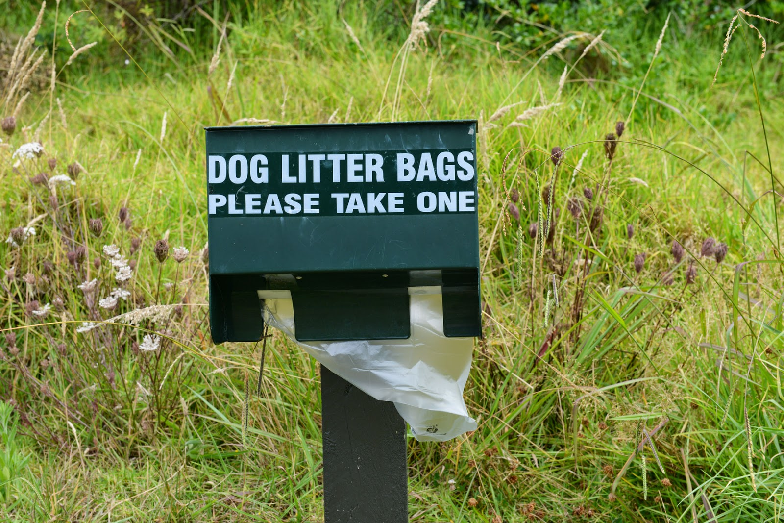 dog litter bags poo bags
