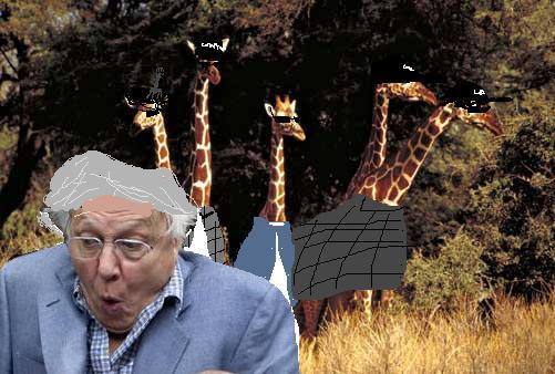 David attenborough giraffe