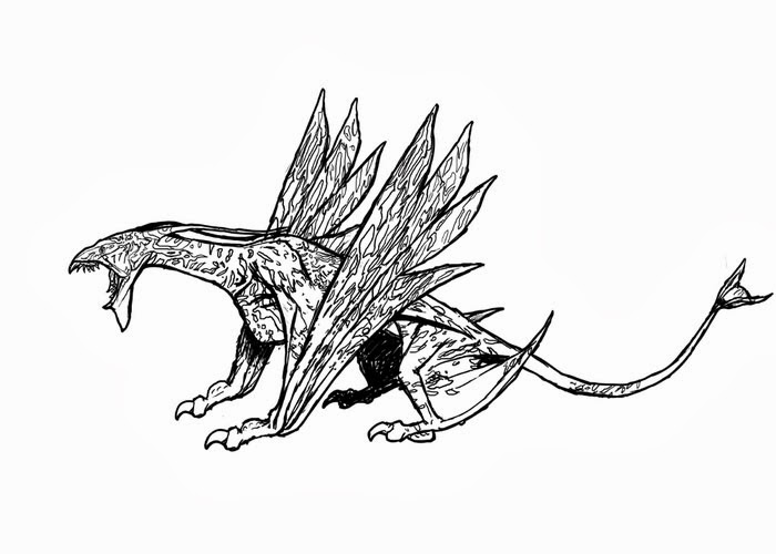 avatar dragon coloring pages - photo#15