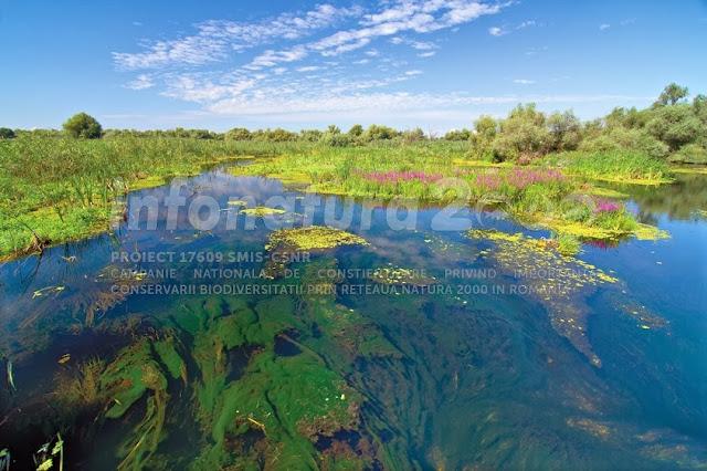 delta dunarii sit natura 2000