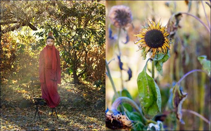 maravillosas fotografías de anna kern
