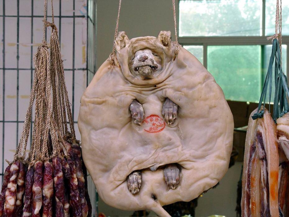 Perro prensado y embutidos de perro (tripas + sangre) a la venta en un mercado callejero. China.