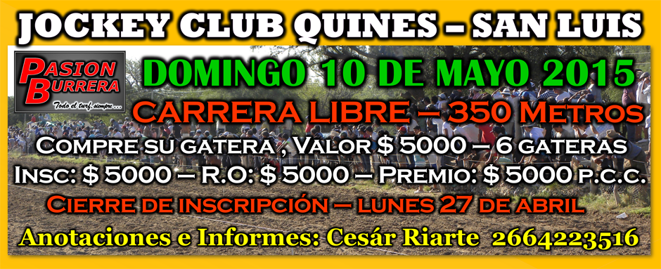 QUINES 10 DE MAYO - LIBRE
