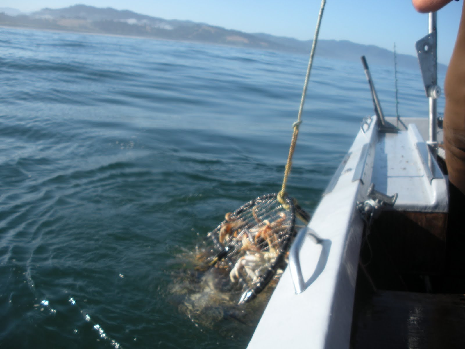 Sean rons really big adventure deep sea fishing on the for Deep sea fishing oregon coast