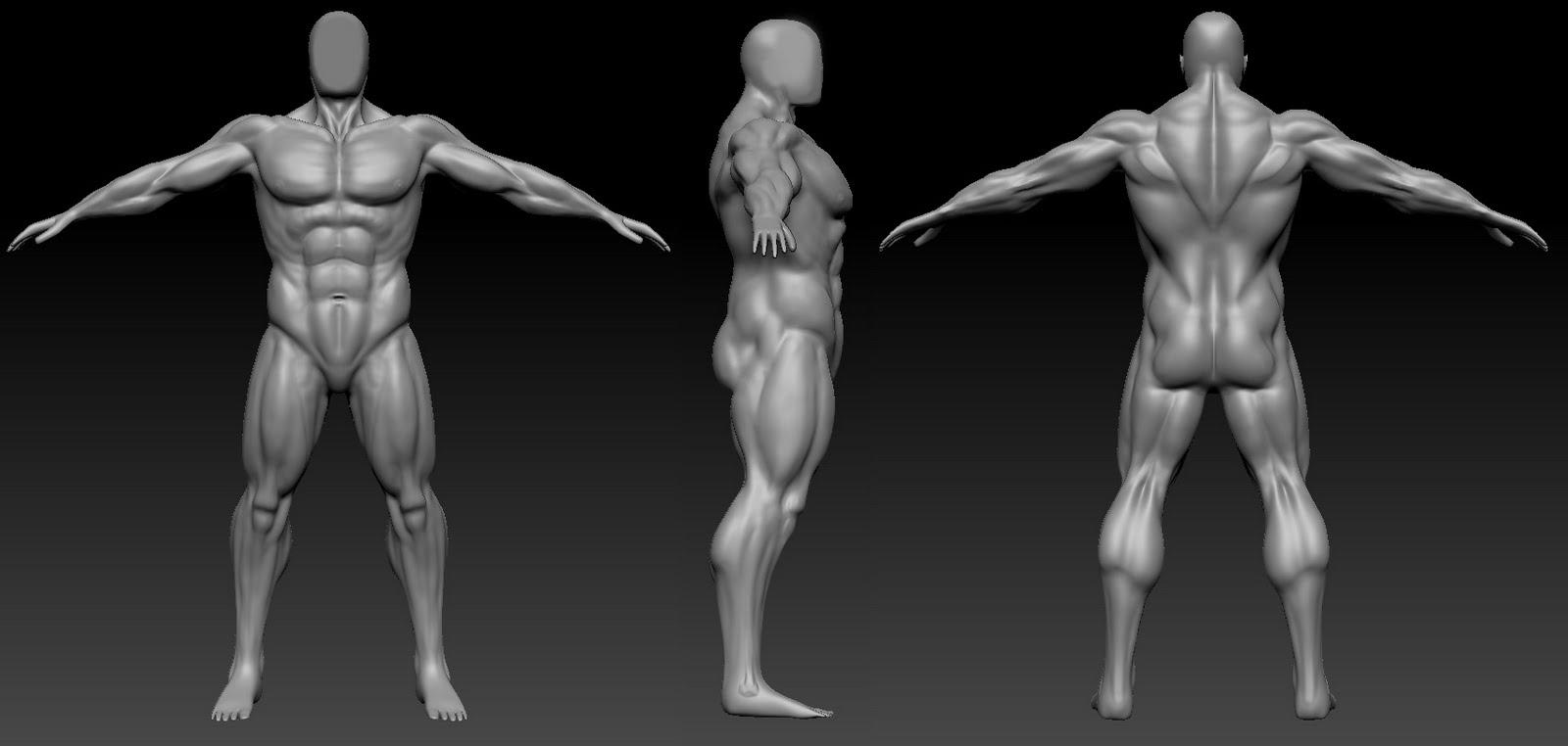 Pixels e Poligonos: ZBrush - estudo de anatomia masculina