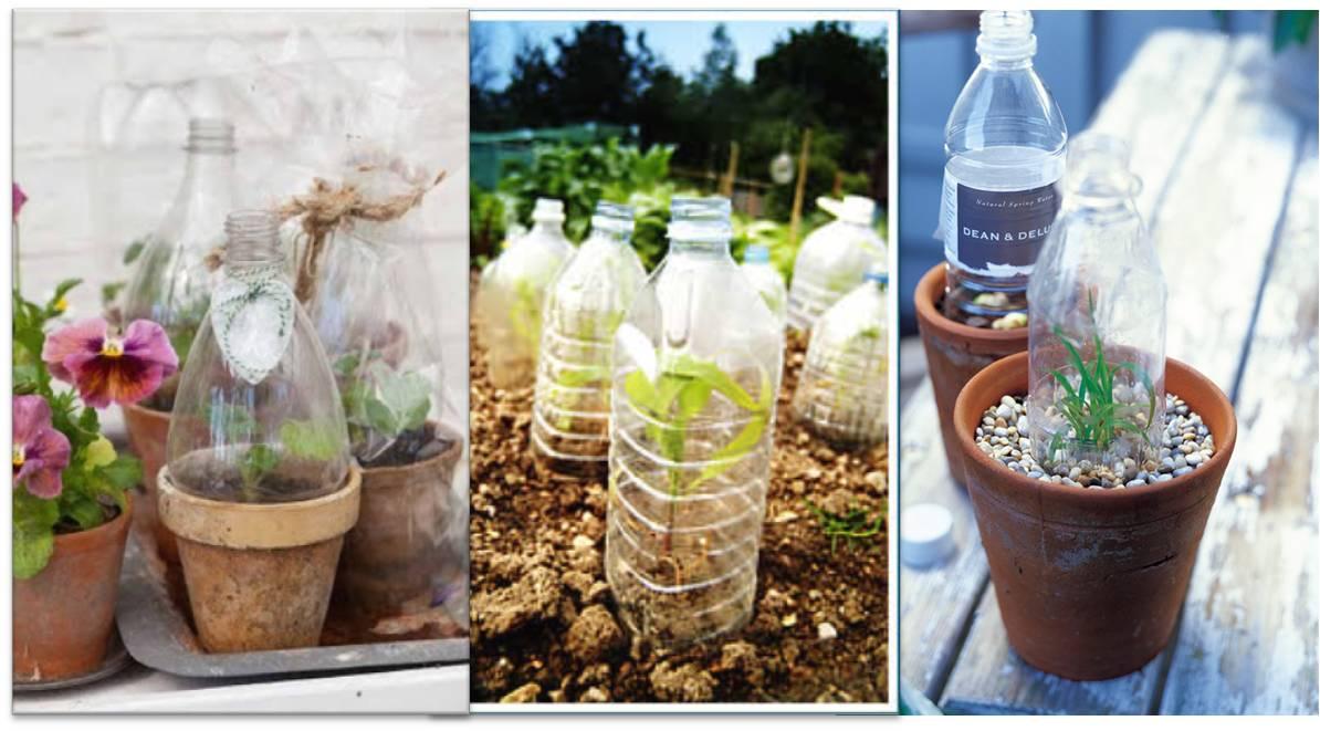 10 ideas para la construcci n de invernaderos reciclados Plantas de invernadero