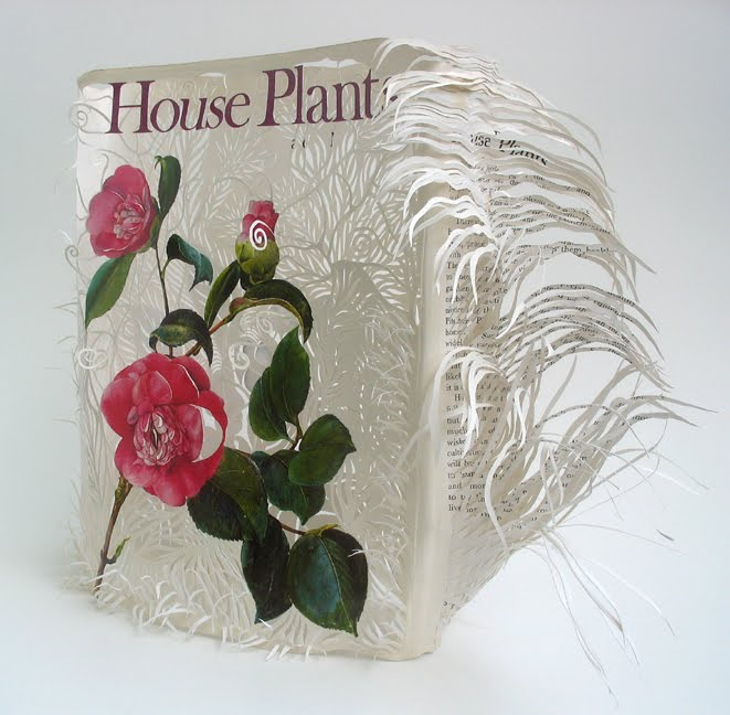 House Plants ~ jacket front