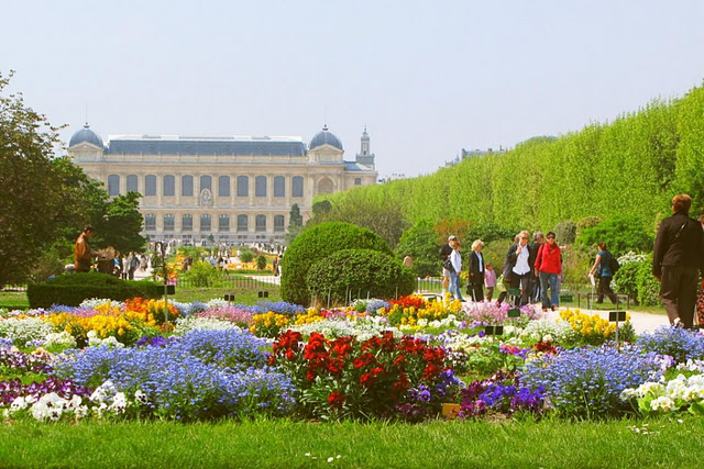 Java travelling 5 best gardens around the world for Jardin plantes paris