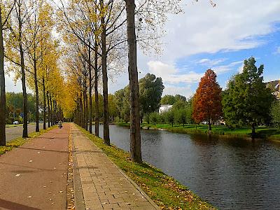 Rotterdam: Autumn in Ommoord