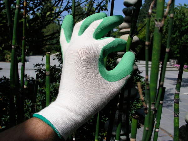 Bamboo Gloves1