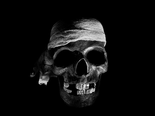 skull wallpaper for home see to world