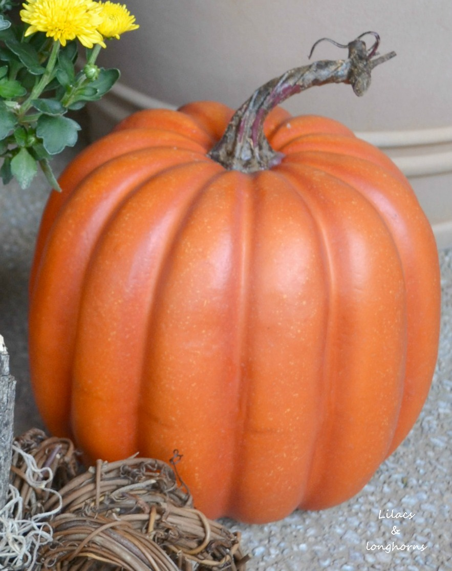 from plain plastic y and shiny to fabulous - Plastic Pumpkins