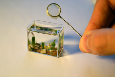 The Russians Create World's Most Smallest Aquarium Seen On www.coolpicturegallery.us