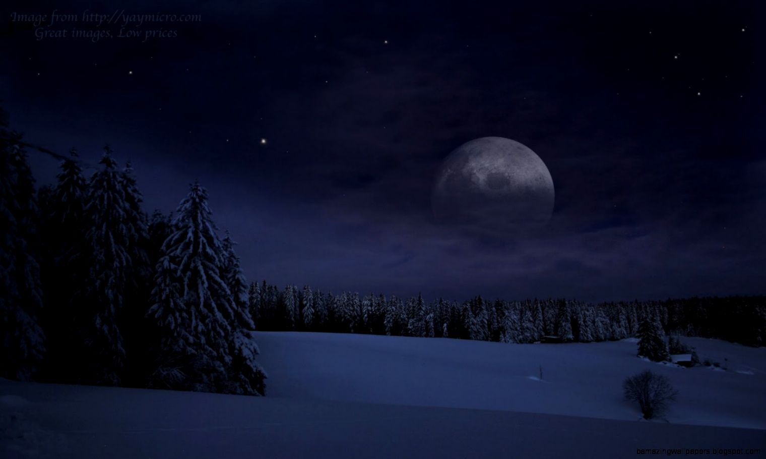 Wallpapers Snow Lamp Tracking Moonlight On The Water 1600x1000
