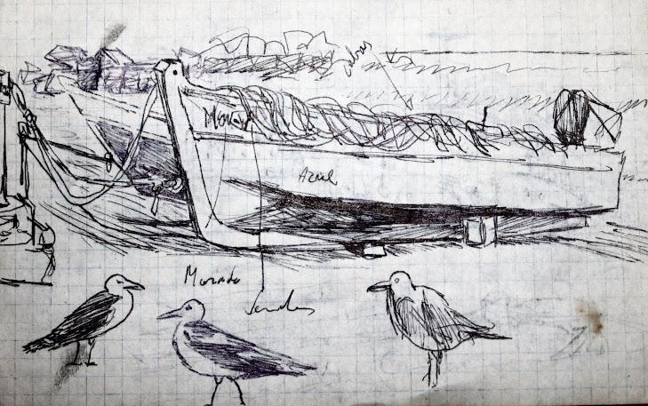 Barca con Gaviota