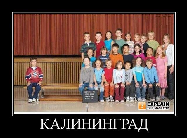 Демотиватор - Калининград