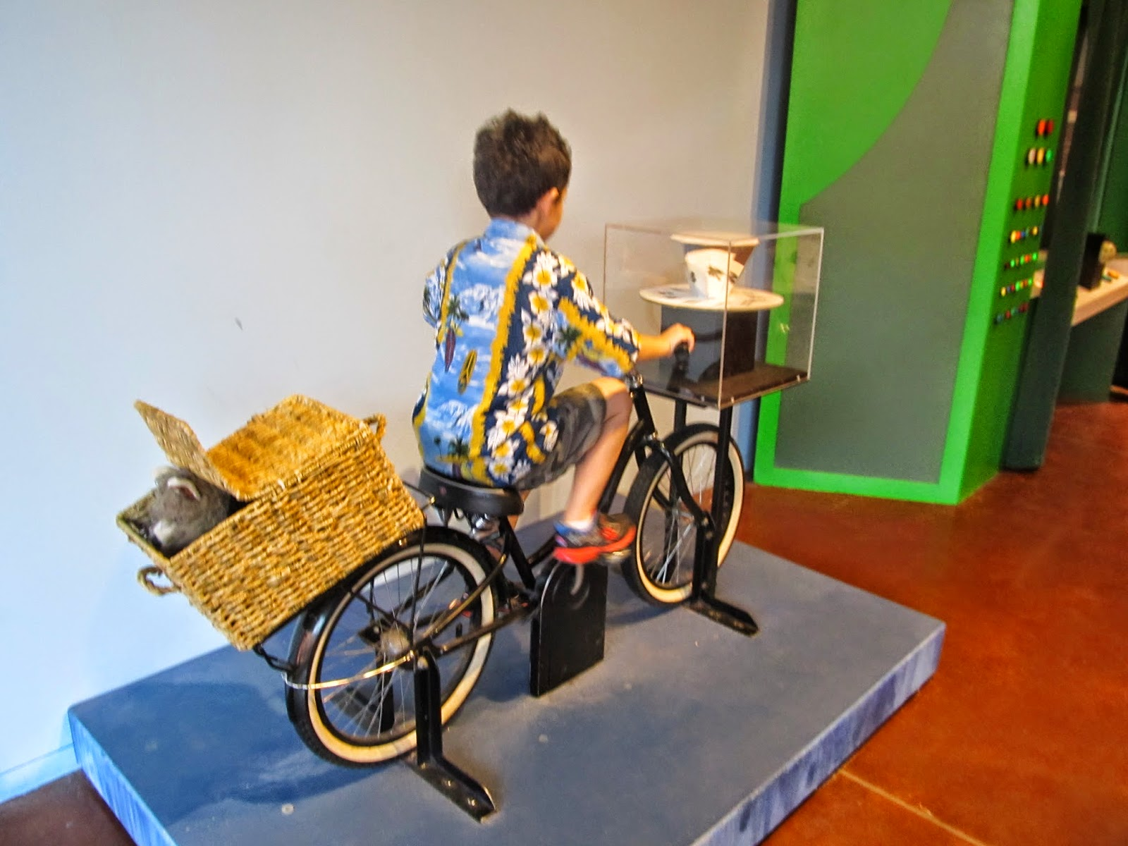 Exercise is good for you! (C) Darrell G. Wolfe - Child on stationary bike peddling to power the display.
