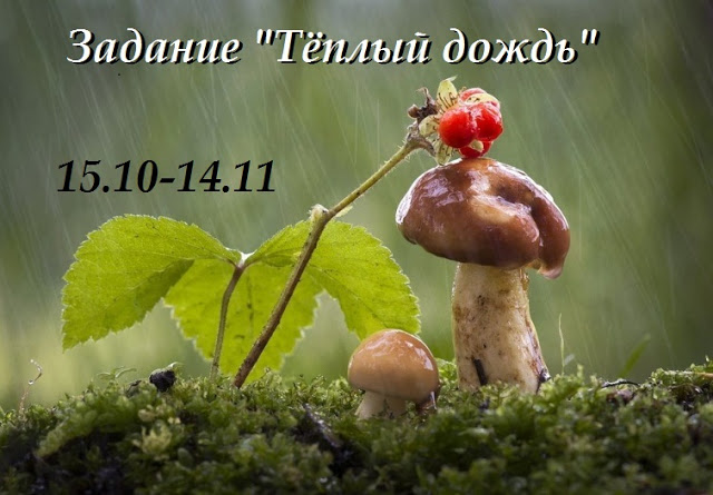 "Задание ""Тёплый дождь"" до 14/11"