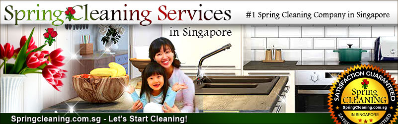 Sping Cleaning Singapore