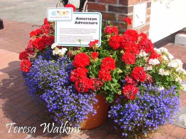 Earth Shattering Gardening: Landscape Boom - Red White Blue!