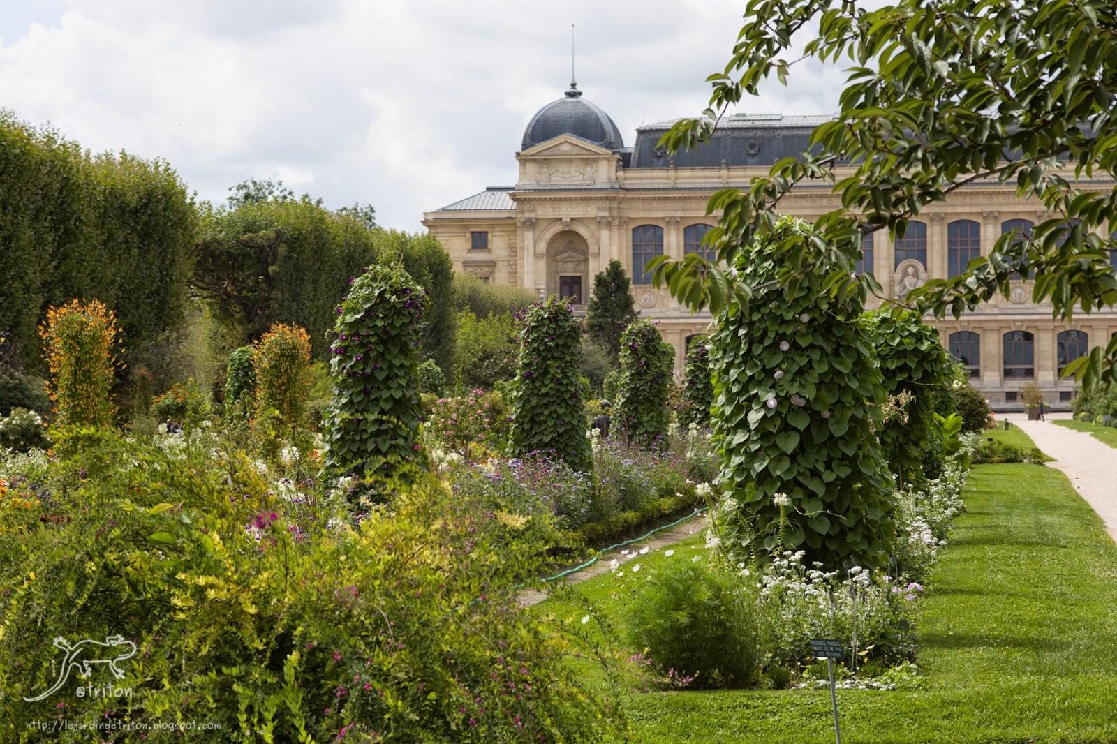 Le jardin de triton visite impromptue au jardin des for Au jardin paris