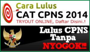 Cara Lulus CAT CPNS 2014