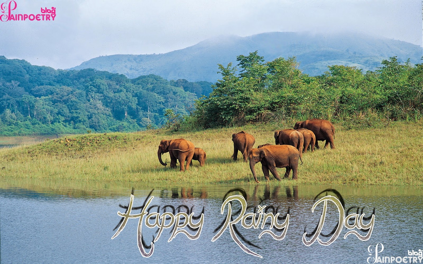 Rainy-Day-Happy-Raini-Day-Pics-Raini-Day -Image-Wallpaper-HD