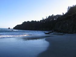 Rosie's beach