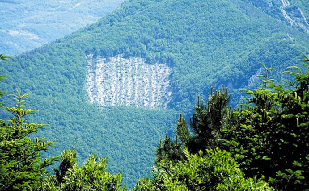 Lo scempio del Monte Lavacchio