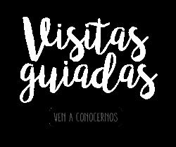 VISITAS GUIADAS CONCERTADAS