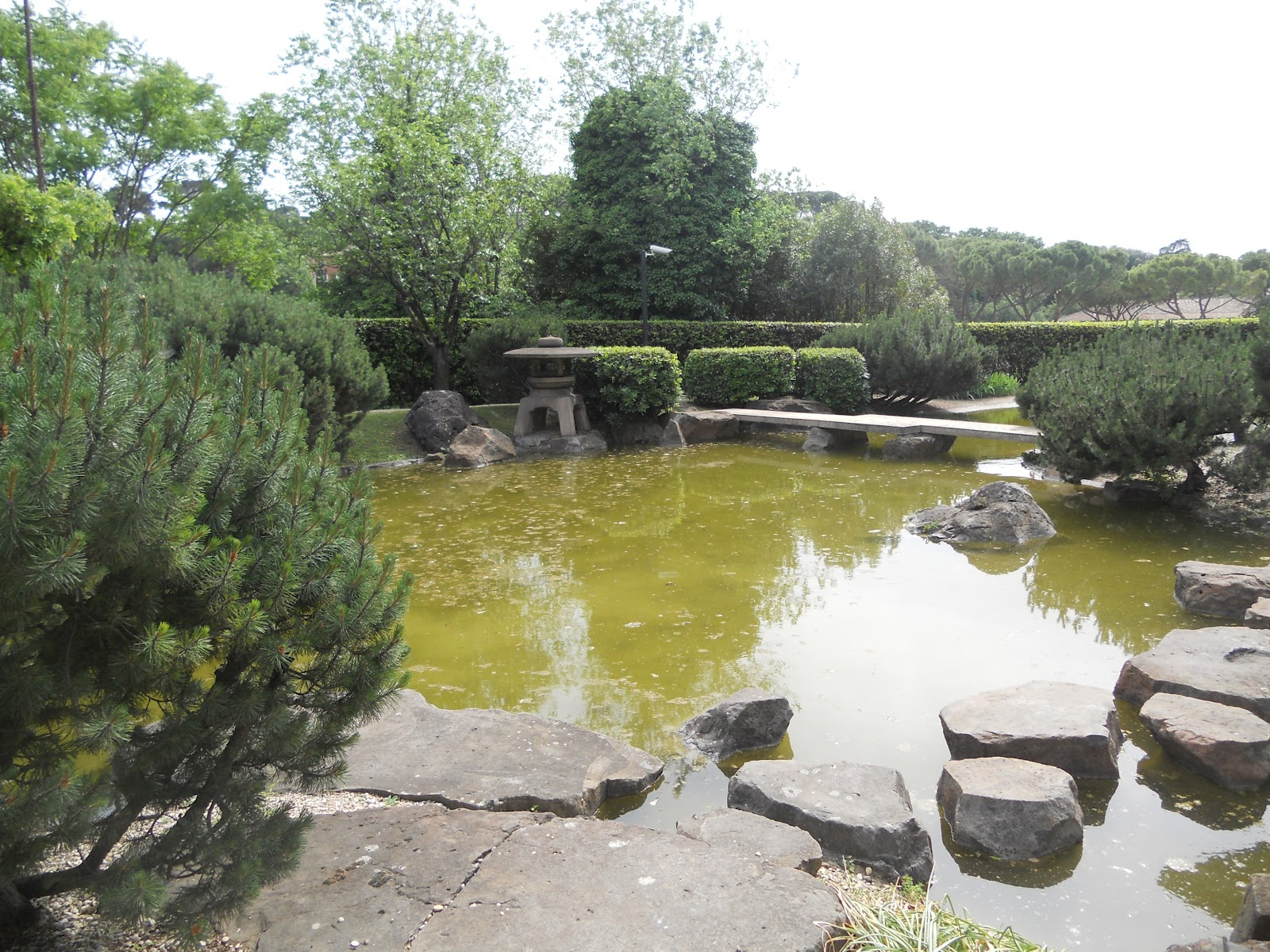 Curiosando giardino giapponese a roma - Piccolo giardino giapponese ...