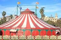 liberosocial-circo