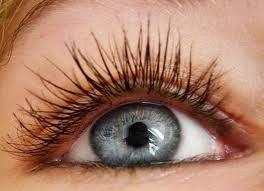 Muitas mulheres procuram de todas as formas aumentar o tamanho de seus cílios...