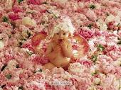 Linda Criança e suas Flores