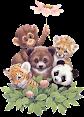 Lindos Animais em Png e Gifs