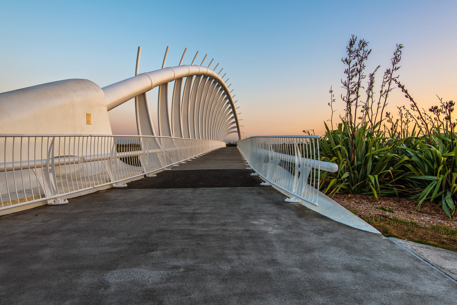 te rewa rewa bridge new plymouth photography