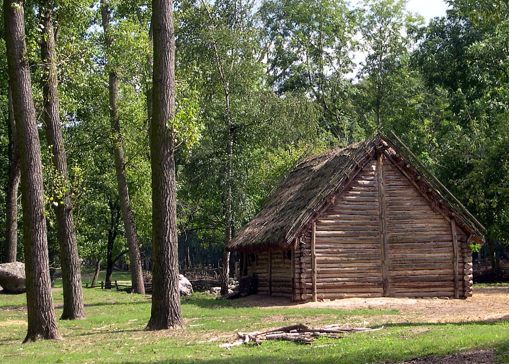 Old european culture log cabin for Wood cabin homes