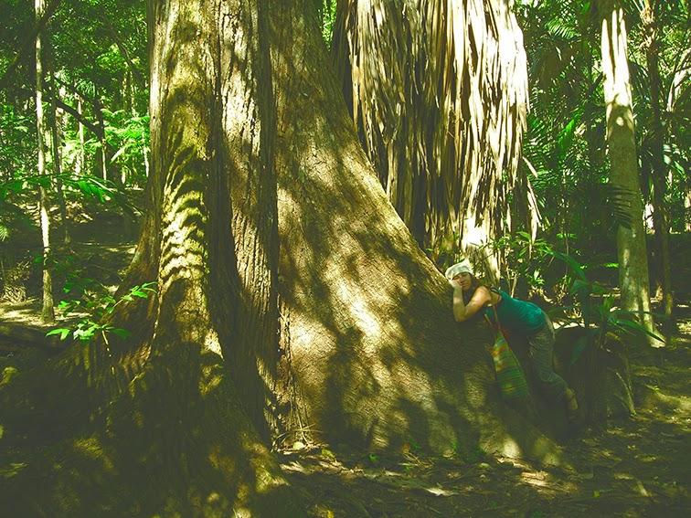 Anita descansa sobre una ceiba de Tikal, Guatemala