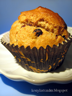 wholemeal-cranberry-chocolate-drop-muffin
