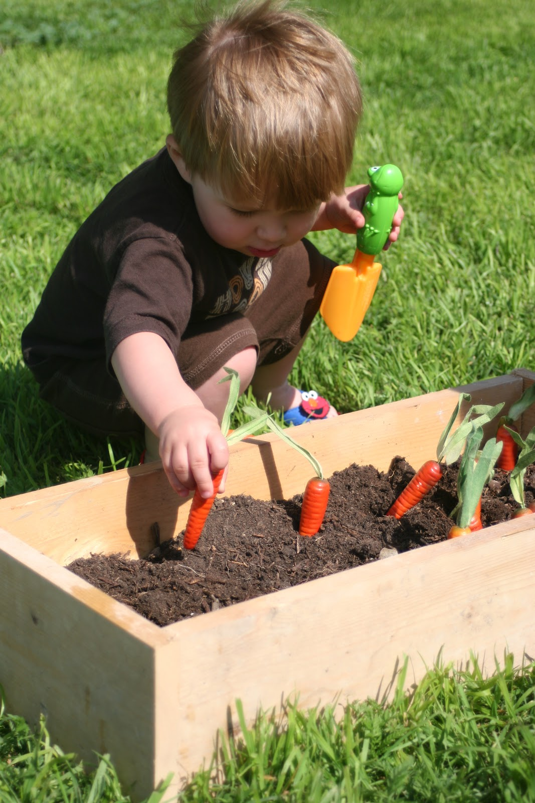 Vegetable garden pictures for kids - I Had Some Fake Carrots I Bought At A Garage Sale Last Year For 5 Cents A Piece Cheap I Was Planning A Fabulous Easter Project With Them But Easter Snuck