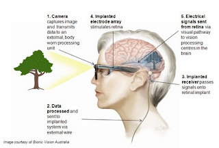 Image of Person's Head in Profile with Glasses Linked to Embedded Technology